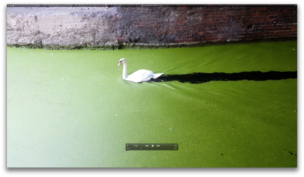 Bildschirmfoto 2013-09-19 um 14.43.18