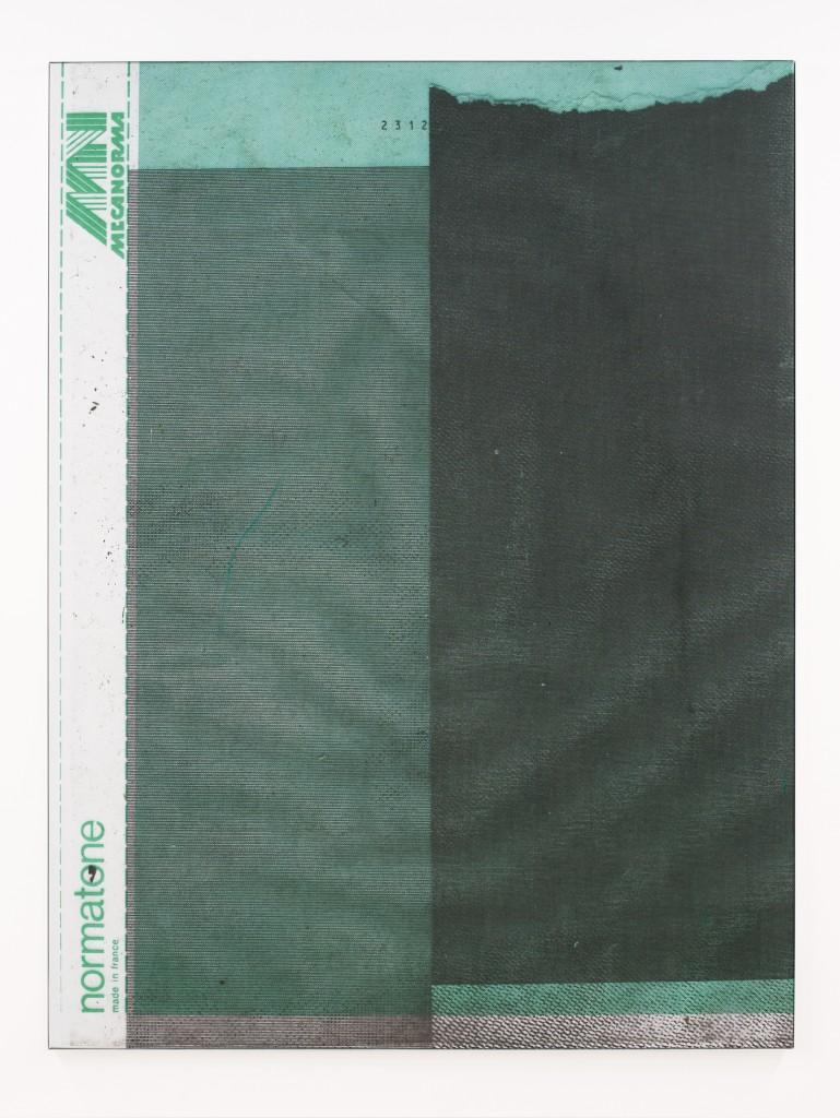 Manor Grunewald E.H.D (Mecanorma Green Mesh 03) 150x200cm oil, acrylics, spraypaint, print on mesh fabric stretched on canvas, aluminium framed 2016